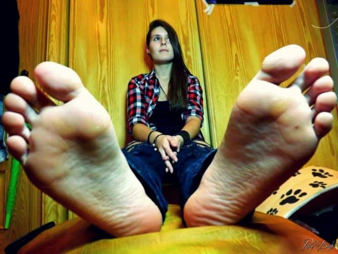 pies amateur