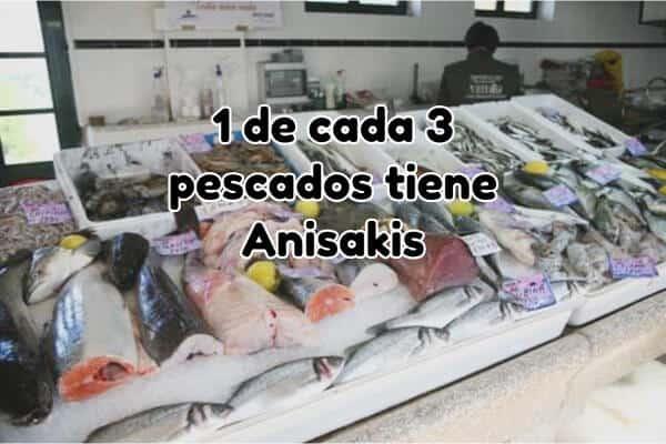anisakis pescado español
